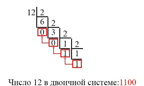 Двоичная система счисления: как переводить, как реализовать на C и C#
