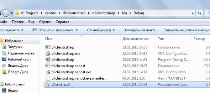 Динамическое подключение dll в C#